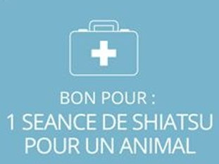 1 séance de shiatsu pour animal