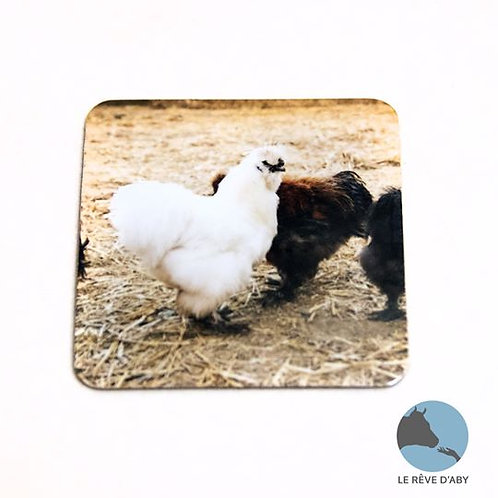 Magnet photo Poules (type 1)