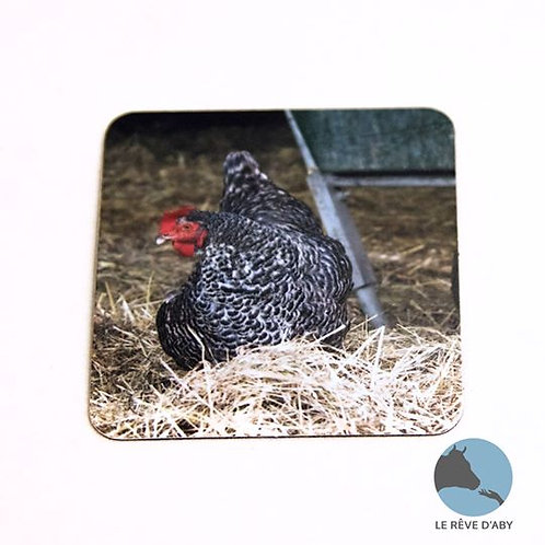 Magnet photo Poules (type 2)