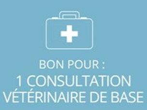 1 consultation vétérinaire