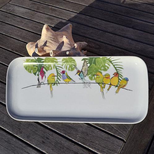 oiseaux jungle