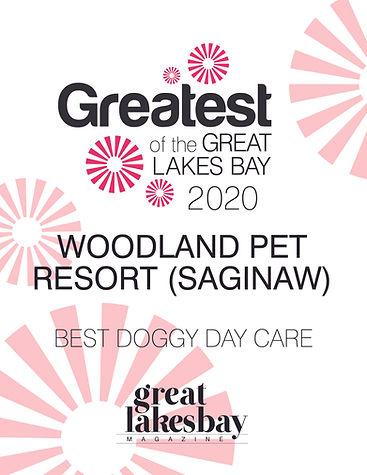 Great Lakes Award 2020.jpg