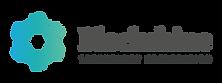 blockshine-logo.png