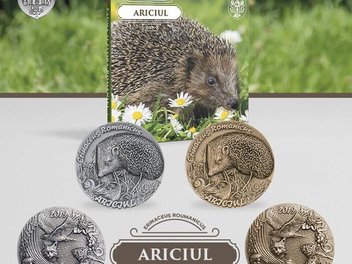 Program medalistic 2019 - Ariciul