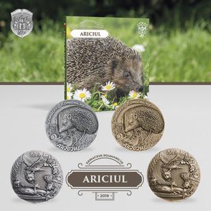 Ariciul
