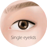 Types of Eyelids - Single eyelid.png