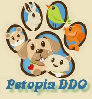Petopia DDO: Who we are, What we do