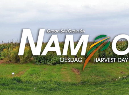 Nampo 2020 - Our varieties grown for you!