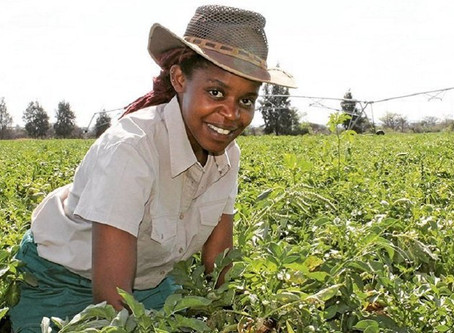 Powerful African Women making strides in Agriculture