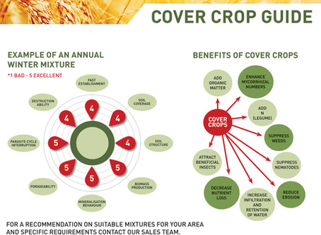 Benefits of Cover Crops
