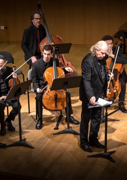 Viva Vivaldi