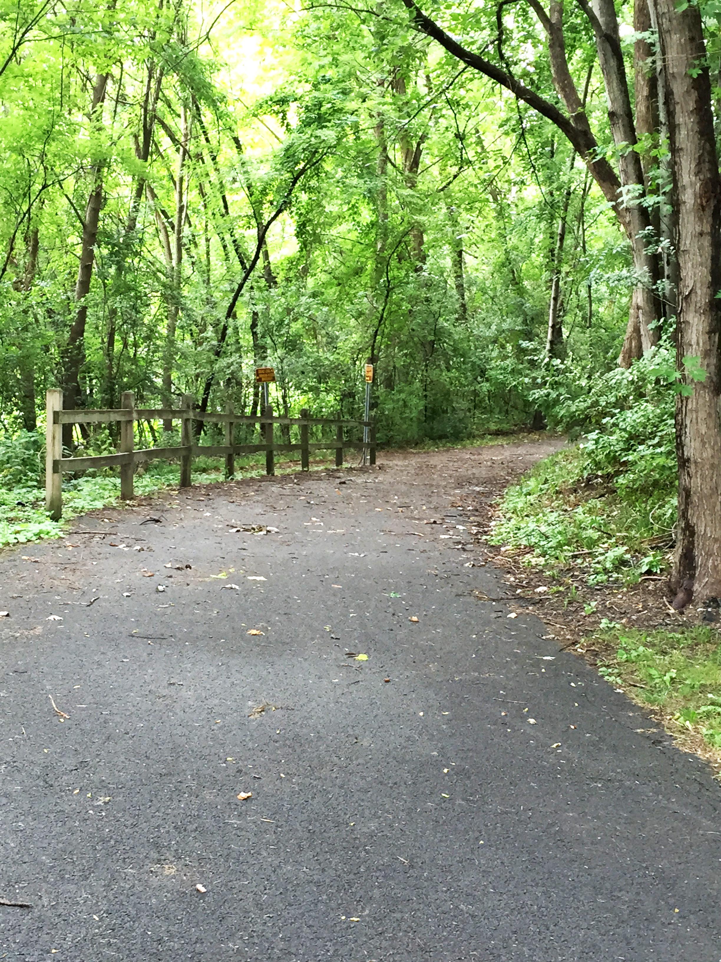 Mohawk/Hudson Bikeway Path