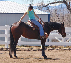 Back In the Saddle_ Effective Riding and