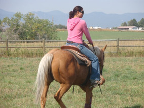 _3 this mare, Anne.  Maybe I'll be this