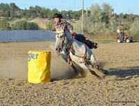 fair and rodeo pics 2011 227.jpg