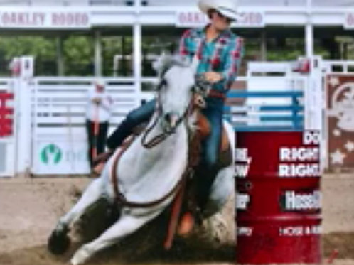 2010 High Caliber WPRA Grey Mare