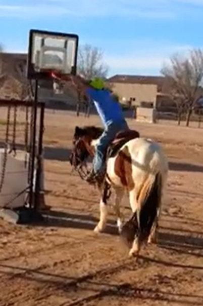 13-14yo Grade All-Around Pony