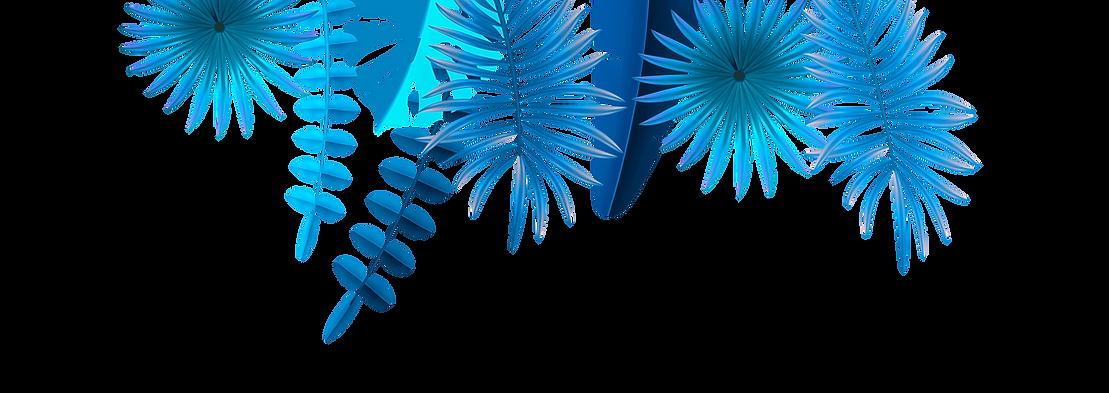 horizontal-vegetal-display-right-colors-