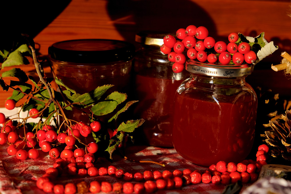 Rowan berry jelly, mountain ash berry jelly and garland, protection cooking spell rowan berry