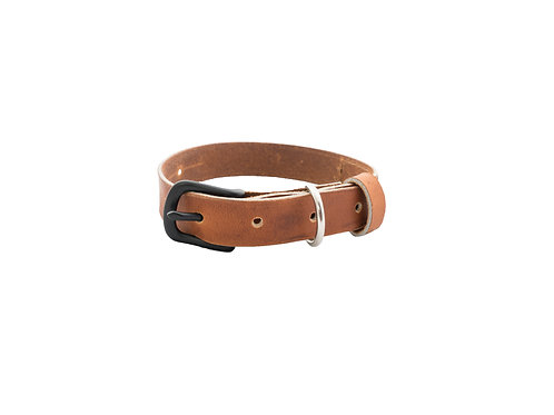 Brown Leather Dog Collar