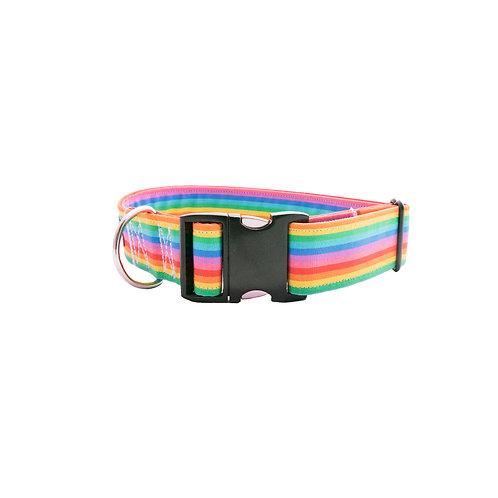 Rainbow - Dog Collar