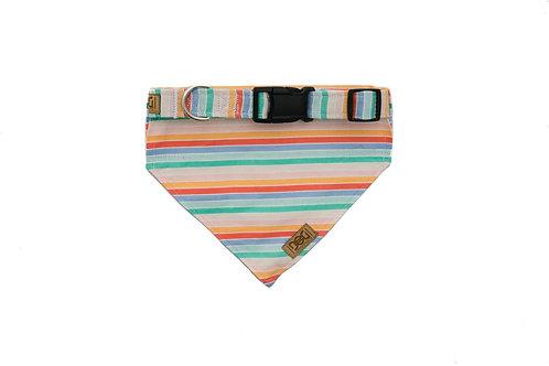 Rainbow Reverie - Matching Dog Collar and Dog Over the Collar Bandana Set