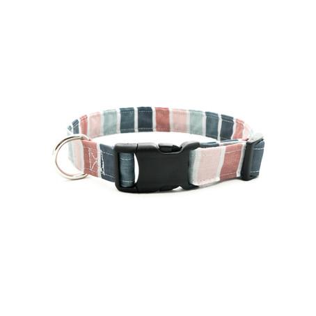 Dog Collars - A Closer Look