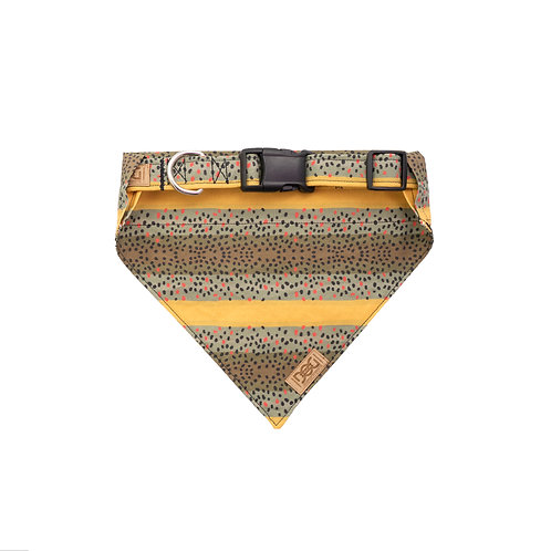 Brown Trout - Matching Collar & Bandana Set