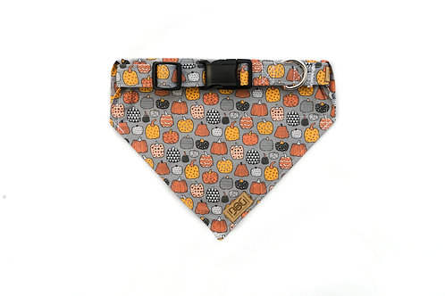 Pup-kin Patch - Matching Collar & Bandana Set