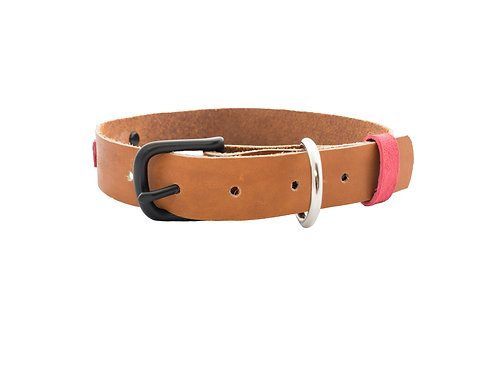 Leather Dog Collar with Pink Suede Accents