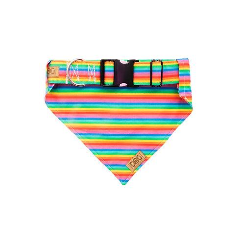 Rainbow - Matching Collar & Bandana Set