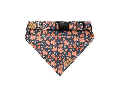 Vintage Fall - Matching Collar & Bandana Set