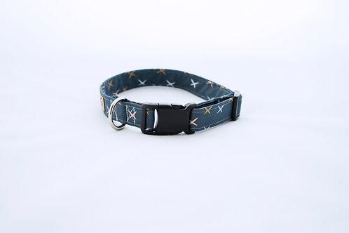 Modern Fall Dog Collar