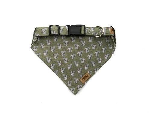 Squirrels - Matching Collar & Bandana Set