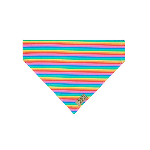 Rainbow - Over the Collar Bandana