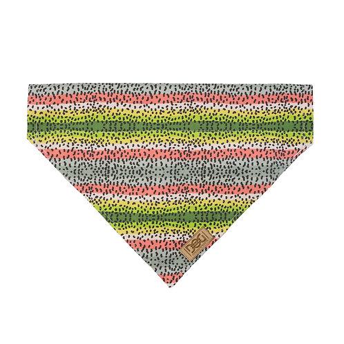 Rainbow Trout Over the Collar Bandana
