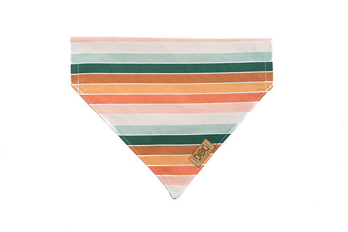 Vintage Boho Stripes - Over the Collar Bandana