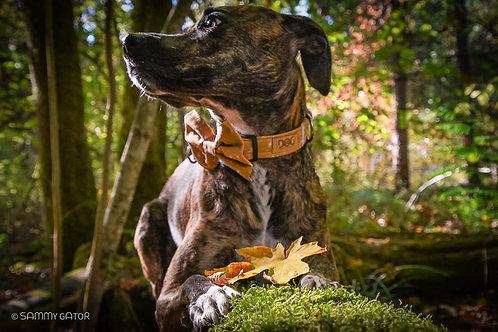 Winter Snow - Dog Collar