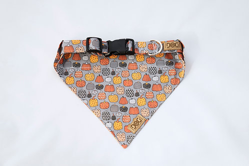 Pumpkins Fall Modern Dog Bandanas