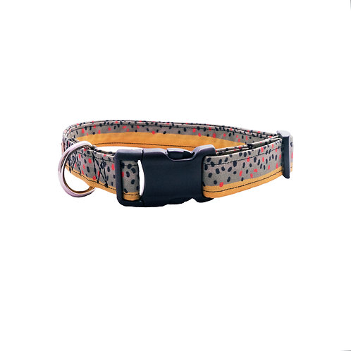 Brown Trout - Dog Collar