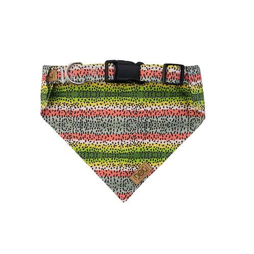 Rainbow Trout - Matching Collar & Bandana Set