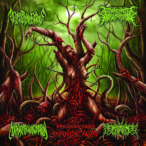 Decomposition of Entrails/ Fermented Masturbation/ Morphogenetic Malformation CD