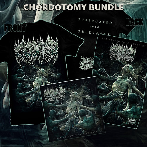 Chordotomy Bundle