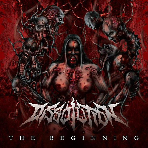 "Dissolution ""The Beginning"" CD"