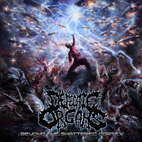 "Defecate Organs ""Beyond The Shattered Cortex"" CD"