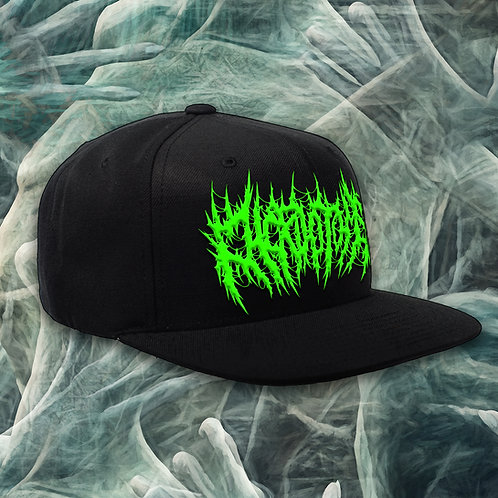 Chordotomy Snapback Hat
