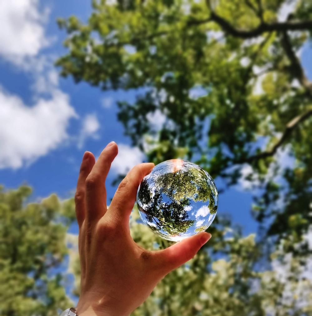 Main soulevant une boule en vert pour refléter un arbre