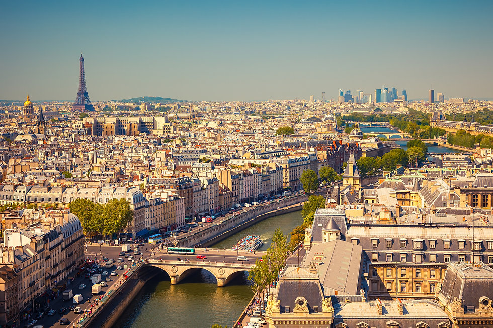 vue aérienne de Paris avec Tour Eiffel