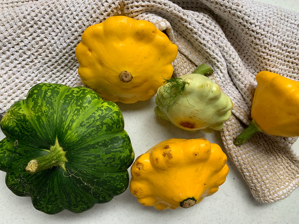 courgettes, patissons et courges