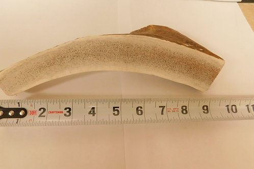 XL Sliced Antler